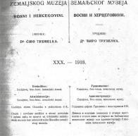 Дигитализована књига: Поријекло православнога народа у сјеверозападној Босни