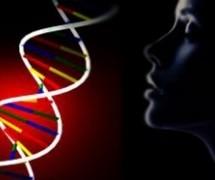 Новости: Откривени гени одговорни за облик лица