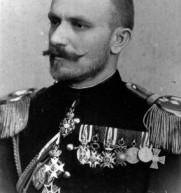 Генетско порекло војводе Живојина Мишића