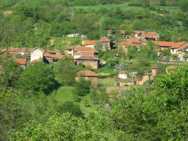 Crna Bara, selo
