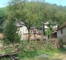 Порекло презимена, село Средор (Власотинце)