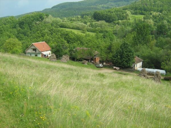 Komarica, selo