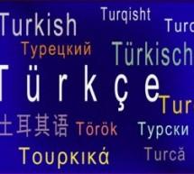 Турцизми у српском језику