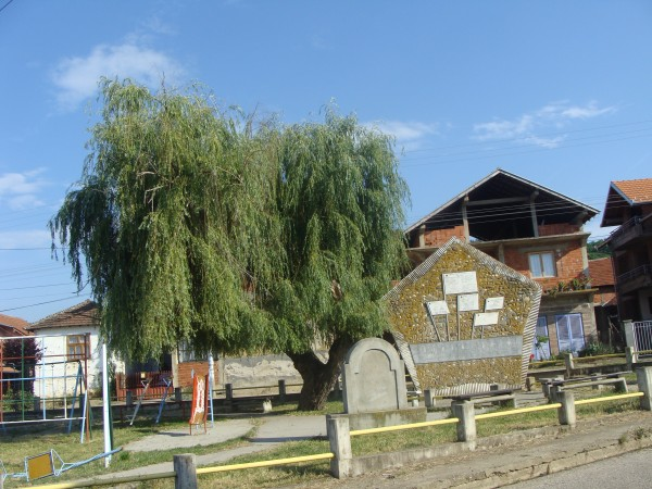 Orasje, selo