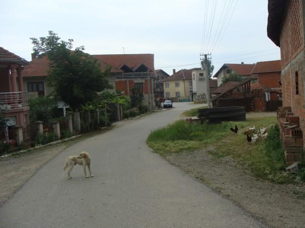 Prilepac, selo