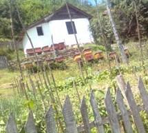 Poreklo prezimena, selo Gornje Gare (Crna Trava)
