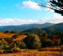 Poreklo prezimena, selo Krivi Del (Crna Trava)
