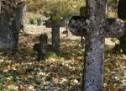 Порекло презимена, парохија Јеловац (Приједор)