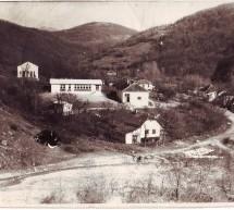 Порекло презимена, село Крушевица (Власотинце)