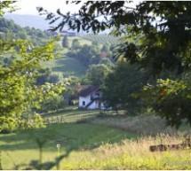 Poreklo prezimena, parohije Miloševo Brdo i Grbavci (Gradiška, RS)