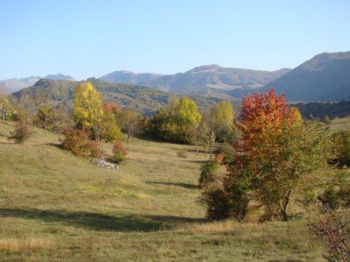 Слика 4: Подручје Придворице у Дробњаку