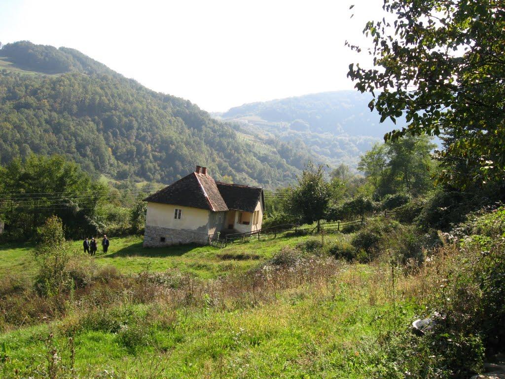 Кућа Максимовића у Богоштици