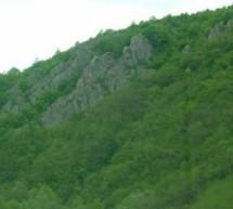 Порекло презимена, село Доњи Дејан (Власотинце)