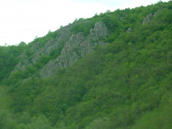 Donji Dejan, selo