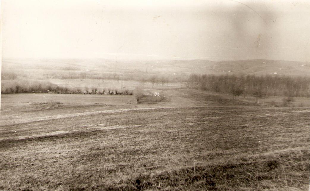 Панорама крндијашке ливаде