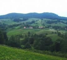 Порекло презимена, село Ведов(н)ица (Нови Град, РС)