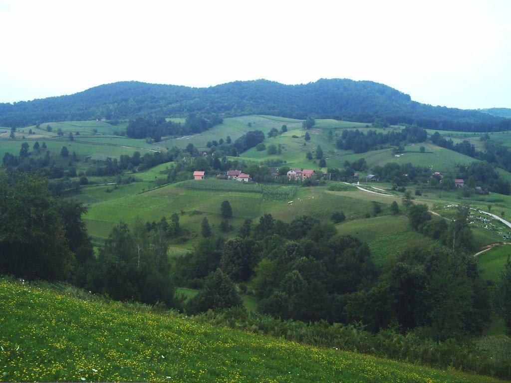 Јоховица