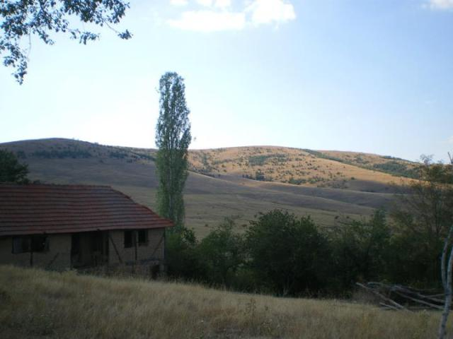 Donji Svracak