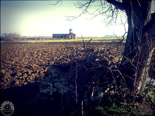 Kojcinovac, selo