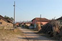 Порекло презимена, село Двориште (Деспотовац)