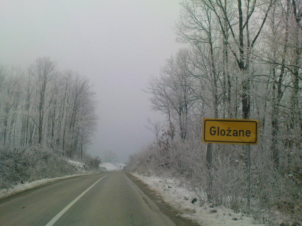 Glozane (Svilajnac)