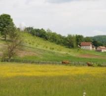 Порекло презимена, село Бершићи (Горњи Милановац)