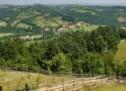 Порекло презимена, село Коштунићи (Горњи Милановац)