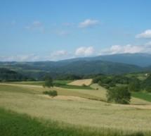 Порекло презимена, село Поповњак (Деспотовац)