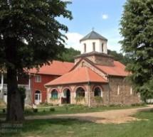 Порекло становништва, село Радошин (Свилајнац)