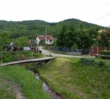 Порекло презимена, село Стењевац (Деспотовац)