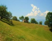 Порекло презимена, село Боришиће (Сјеница)