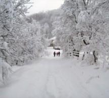 Порекло презимена, село Грабовица (Горњи Милановац)