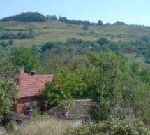 Порекло презимена, село Брестов Дол (Бабушница)