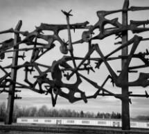 Žrtve fašističkog terora u Baranji (1941-1945)