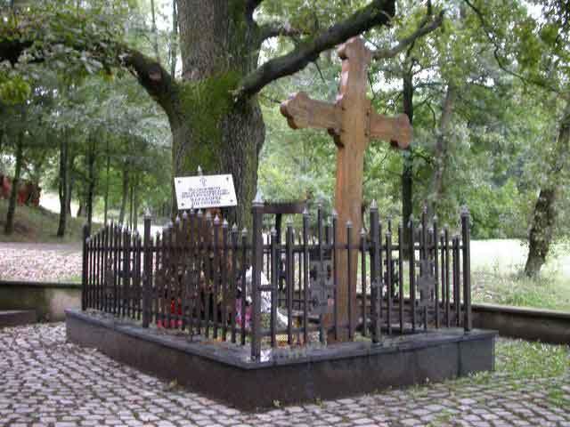 Првобитно место где је сахрањен Карађорђе, Радовањски луг