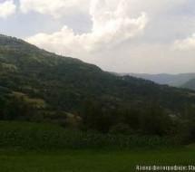 Порекло презимена, село Брезова (Краљево)