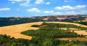 Порекло презимена, село Јасеница (Неготин)
