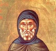 Свети Симеон Столпник