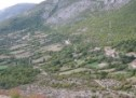 Порекло презимена, село Бијељани (Билећа)