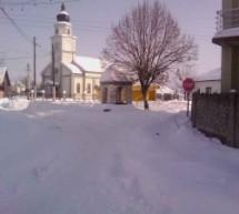 Порекло презимена, село Велика Врбица (Кладово)