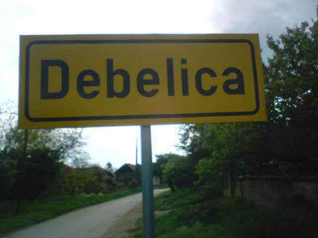 Debelica