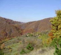 Порекло презимена, село Падине (Зубин Поток)