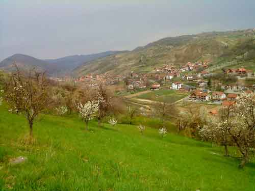 Puhovac