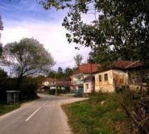 Порекло презимена, село Горња Коритница (Бела Паланка)