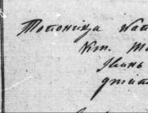 Арачки тефтер из 1829/1930. за село Топоница (Гружа)