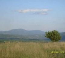 Poreklo prezimena, selo Gornja Glama (Bela Palanka)