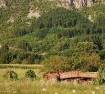 Порекло презимена, село Крупац (Бела Паланка)