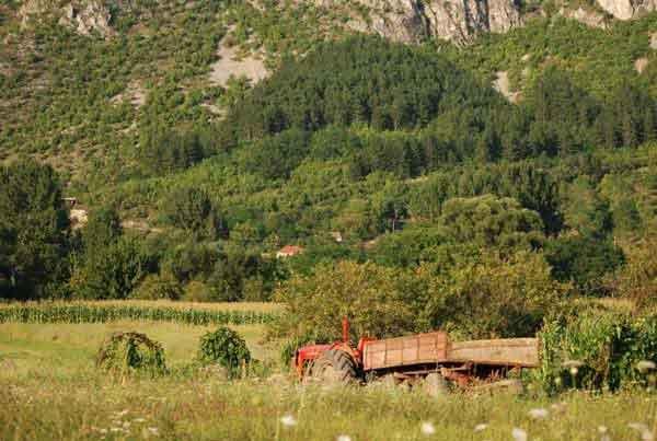 Село Крупац, фото: Маша П. (Panoramio)