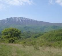 Порекло презимена, село Топоница (Бела Паланка)