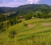 Порекло презимена, село Лалинце (Врање)